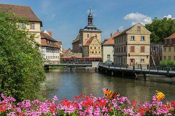 Gezicht op het oude stadhuis van Bamberg van Animaflora PicsStock