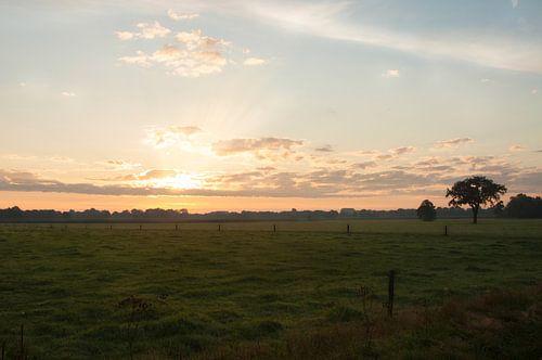 Zonsopkomst Twenteland