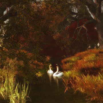 Tierreich  – Schwäne im Wald von Jan Keteleer