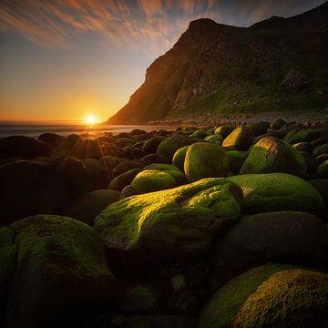 Rocky beach van Wojciech Kruczynski