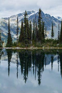 Staande reflectie van berg en bomen in Canadees meer von Milou Mouchart