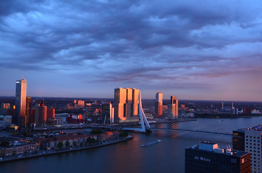 De Rotterdam in de Zon