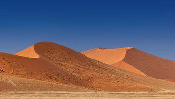 Sossusvlei Namibië  (5) van Adelheid Smitt