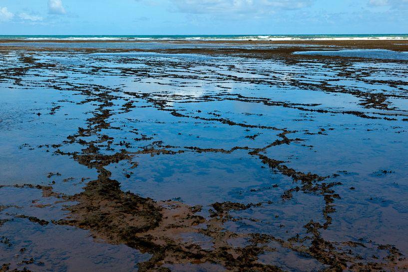 De atlantisch oceaan in Bahia, Brazilie, bij eb. Abstract landschap. van Eyesmile Photography