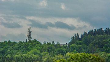 bosbloemenveld landschap Erzgebirge paddestoelen van Johnny Flash