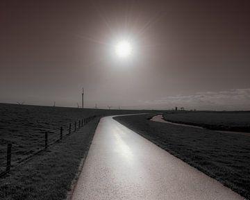 Straße entlang des Noorderleegdijk im Gegenlicht von Harrie Muis