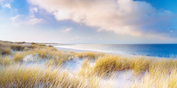 Dunes and The Sea van Sascha Kilmer