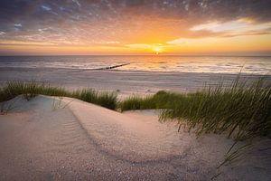 Reverence (duinen en strand Nieuw-Haamstede) van Thom Brouwer