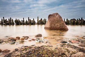 Baltic Sea coast van