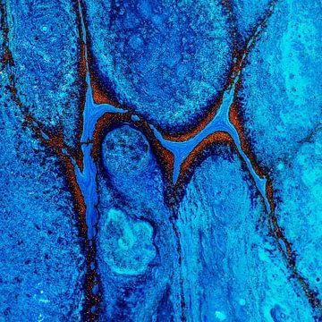 Acryl detail van Rob Smit