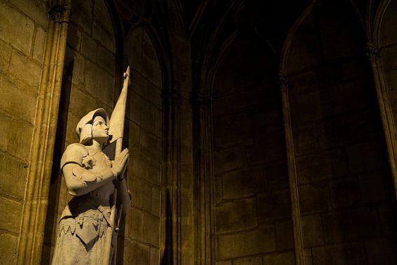 Notre-Dame Parijs - 3 van Damien Franscoise