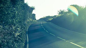 Smal weggetje in Devon, Engeland met zomerse vibes van Jeffrey Hoorns