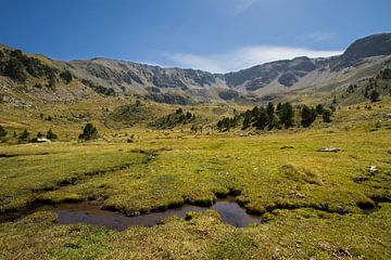 Vall de Sorteny, een mooi dal in de Andorraanse Pyreneeën von Paul Wendels