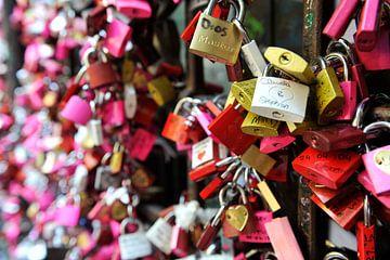 Love Locks - Verona, Italie - Casa di Giulietta van Lars Scheve