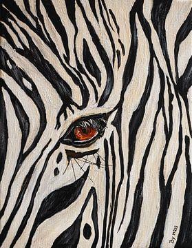 Zebra-Auge von Eye to Eye Xperience By Mris & Fred