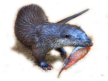 Was für ein Fisch, Otter! von Dirk H. Wendt