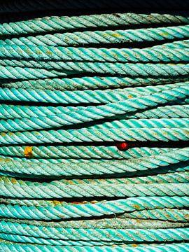 Seegrünes Seil im Hafen von Lauwersoog von Helene Ketzer
