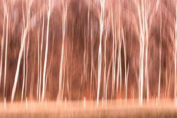 Abstrakte Bäume von Lucia Leemans