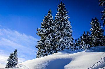 Allgaeu sur la montagne à midi sur Freedom Streaming Photography