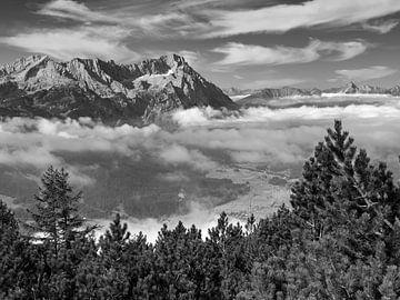 Blick vom Wank zur Zugspitze von Andreas Müller