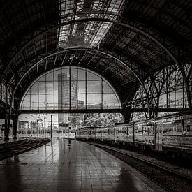 Barcelona Franca Railway Station van Susan Chapel
