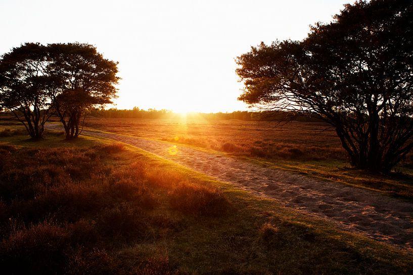 Zonsondergang op de Larense Heide van Christiaan Krouwels