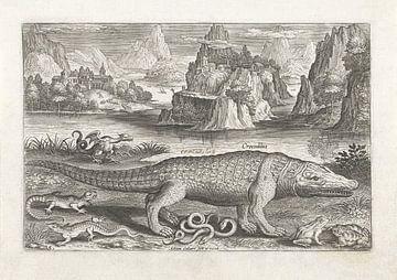 Enkele reptielen en amfibieën op een oever van Adriaen Collaert, after 1598 - 1618_1