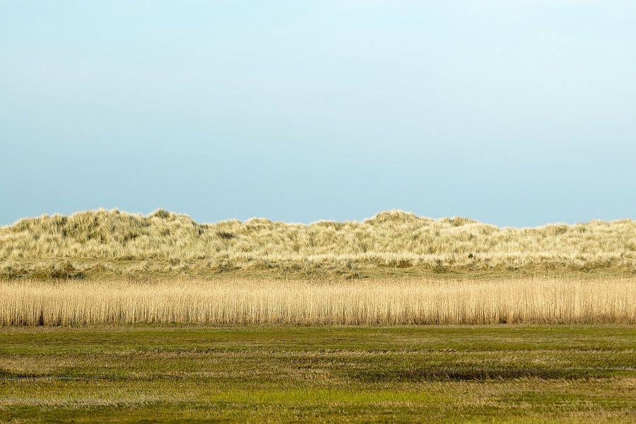 Duinlandschap van Ameland