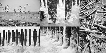Strandleven in zwart-wit van Wies Steenaard