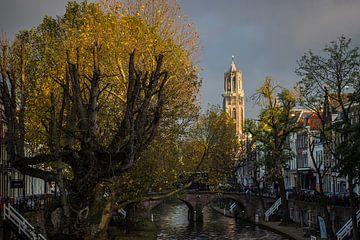 Zeer mooi licht op de Domtoren in Utrecht