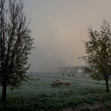 IJsselbrug Zwolle in de mist van Jenco van Zalk