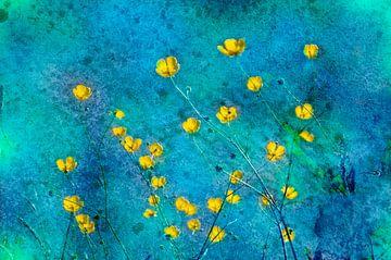 Boterbloemen in een blauwe achtergrond van Corinne Welp