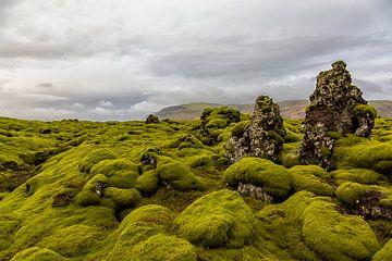 De met mos begroeide lavavelden van Eldhraun in IJsland van Paul Weekers Fotografie