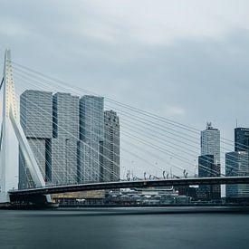 Skyline van Rotterdam met Erasmusbrug van Lorena Cirstea