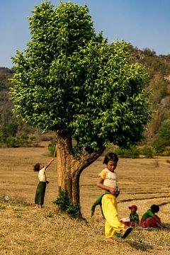 Kinder auf dem Land von Vincent Vink
