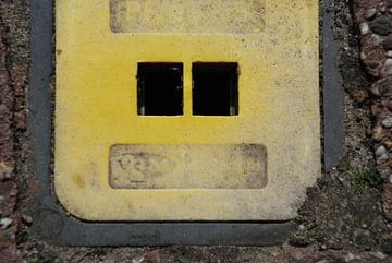 "Industrial Face 1, ""Piet Peilbuis"" von Simone Leenders"