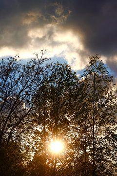 lenteavond van Thomas Jäger