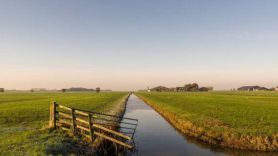 Wiese mit Zaun, Graben, Bauernhöfen und Kopfweiden
