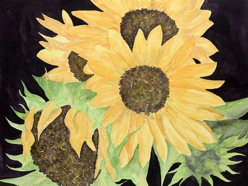 De zonnebloemen