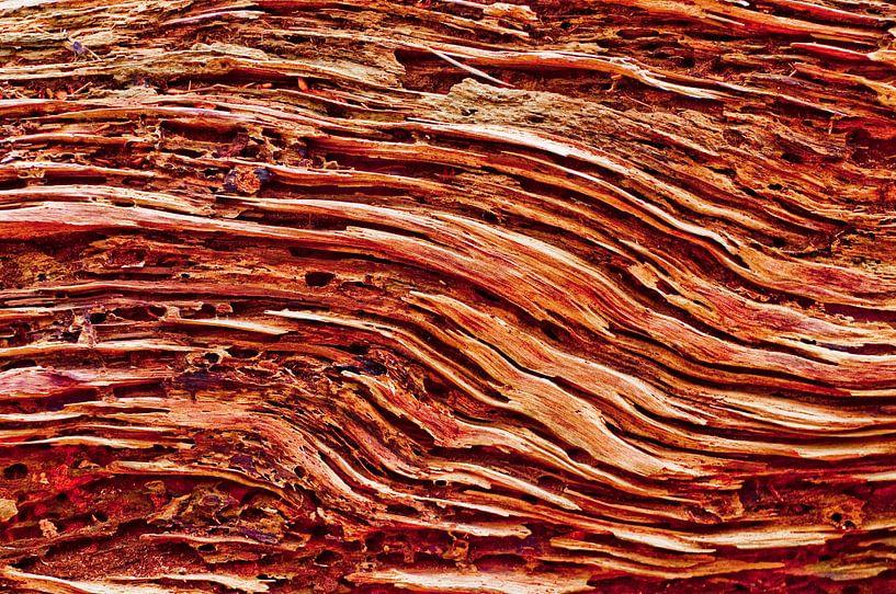 Wooden Layers von Ron Veltkamp