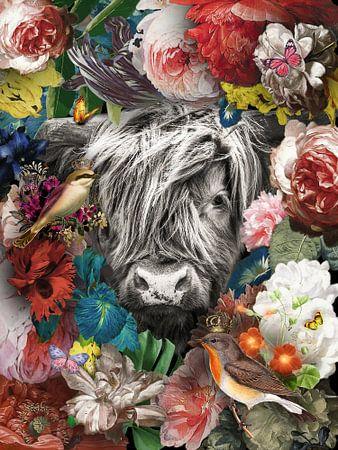Schotse Hooglander in mixed media artwork van John van den Heuvel