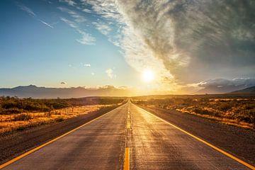 Droomweg in Patagonië - Fin del Mundo van Dieter Meyrl