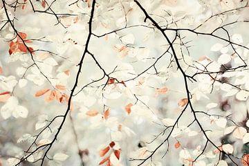 Schönheit in Einfachheit von Lars van de Goor