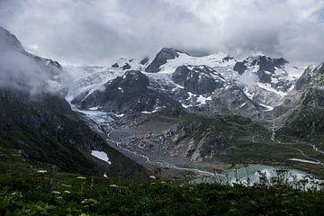 Ruig berglandschap van Sasja van der Grinten