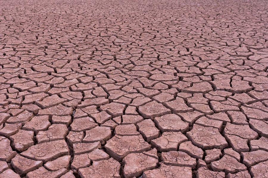 Patronen in de woestijn van Jeroen Kleiberg