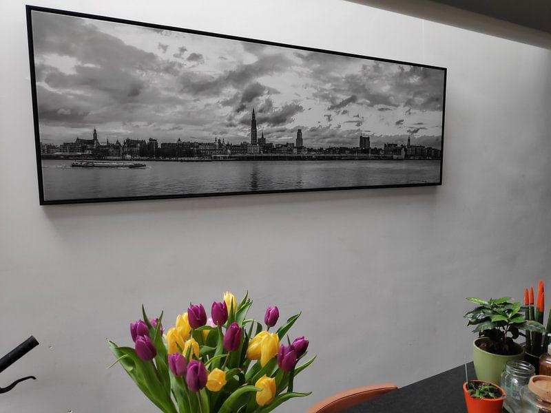 Klantfoto: Antwerpen  Skyline monochroom panorama van Maarten Visser