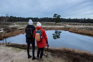 Le domaine du lac forestier Heidestein Bornia ! sur Peter Haastrecht, van