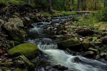 Im Schwarzwassertal im Erzgebirge von Johnny Flash
