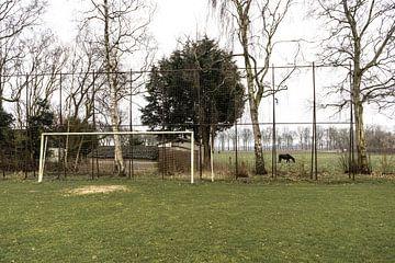 Voetbalveld met boerderij op de achtergrond bij VV Seta (Sportclub Exloërmond tot Afdraai) | Over de van Over de Bal