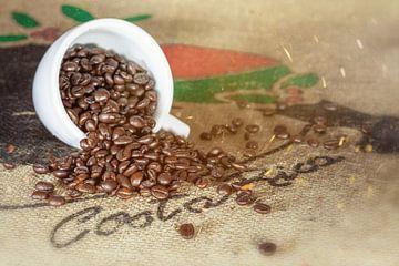 Koffie uit Costa Rica